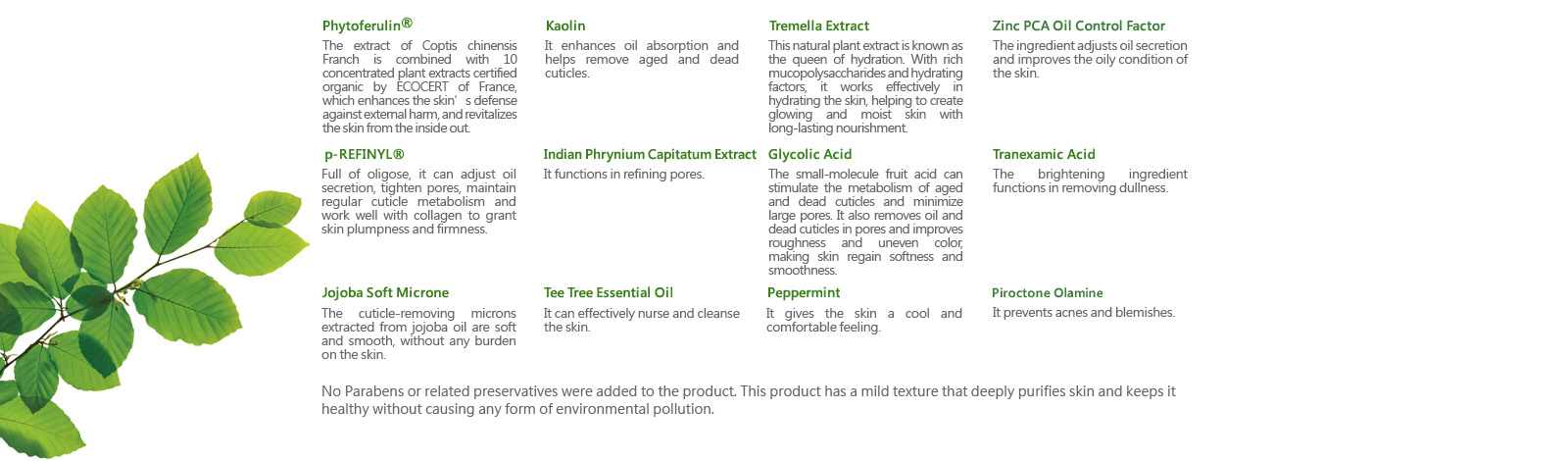[cml_media_alt id='6966']tee-tree-purifying-clay-mask-cleanser-in-1-03[/cml_media_alt]
